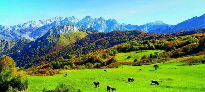 10 motivos que hacen de Asturias un destino especial