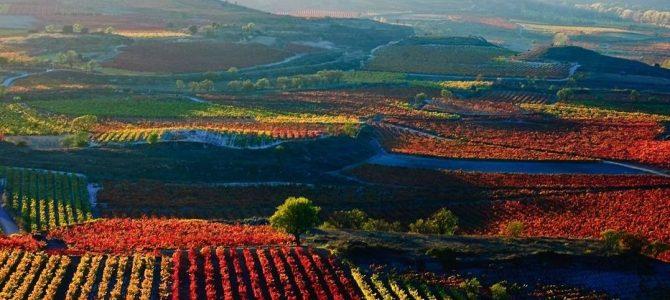 15 razones por las que debes hacer una escapada a La Rioja